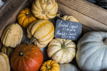 giddy grocer pumpkins - Daniel Cobb - Locally grown