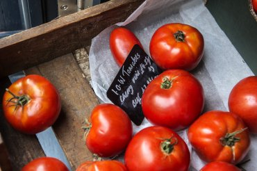 giddy grocer tomatoes - Daniel Cobb - Locally grown