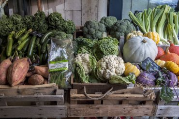 giddy grocer vegetables - Daniel Cobb - Locally grown
