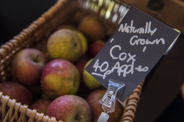 millars general store cox apples - Daniel Cobb - Locally grown